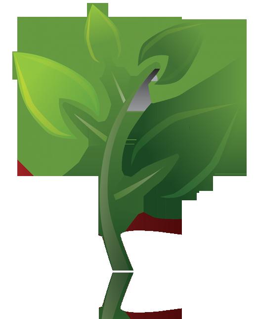 branches. logo